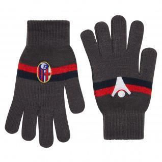 Handschoenen Bologna 2017-2018