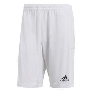 adidas Team 19 Shorts